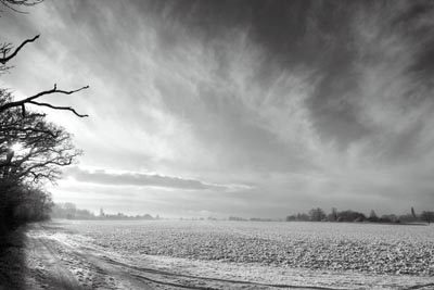 Snowy fields looking towards Diddington